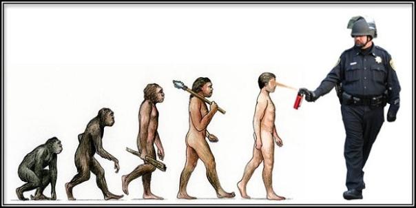 evolved-3