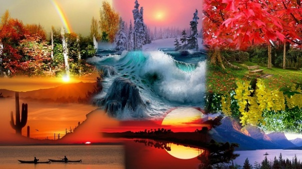 nature_collage_1
