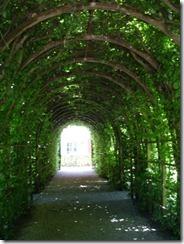 secret-garden7-berceaux-inside