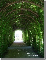 secret-garden7-berceaux-inside_thumb_thumb