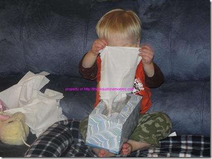 tissue-peekaboo