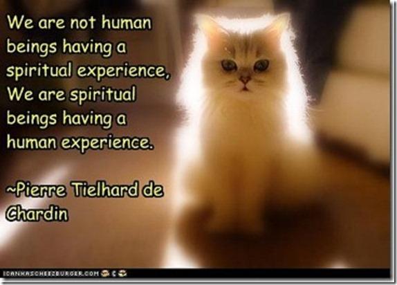spiritual-beings-human-experience