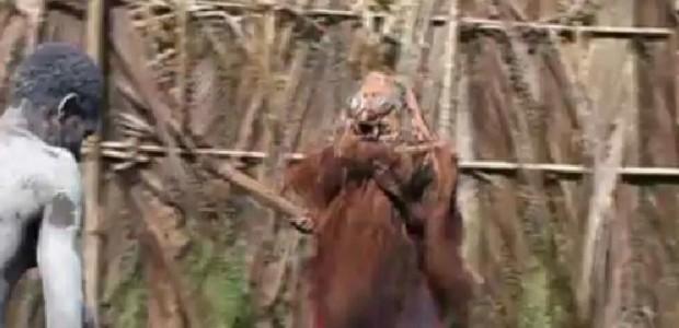 Leon-Hijweege-PNG-Initiation-Ritual-620x300